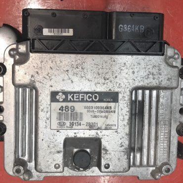 Kia/Hyundai, 9003100364KB, 39134-2B301, MEG17.9.12.1