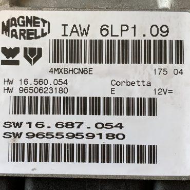 Peugeot 206 2.0, IAW 6LP1.09, HW 16.560.054, HW 9650623180, SW 16.687.054, SW 9655959180